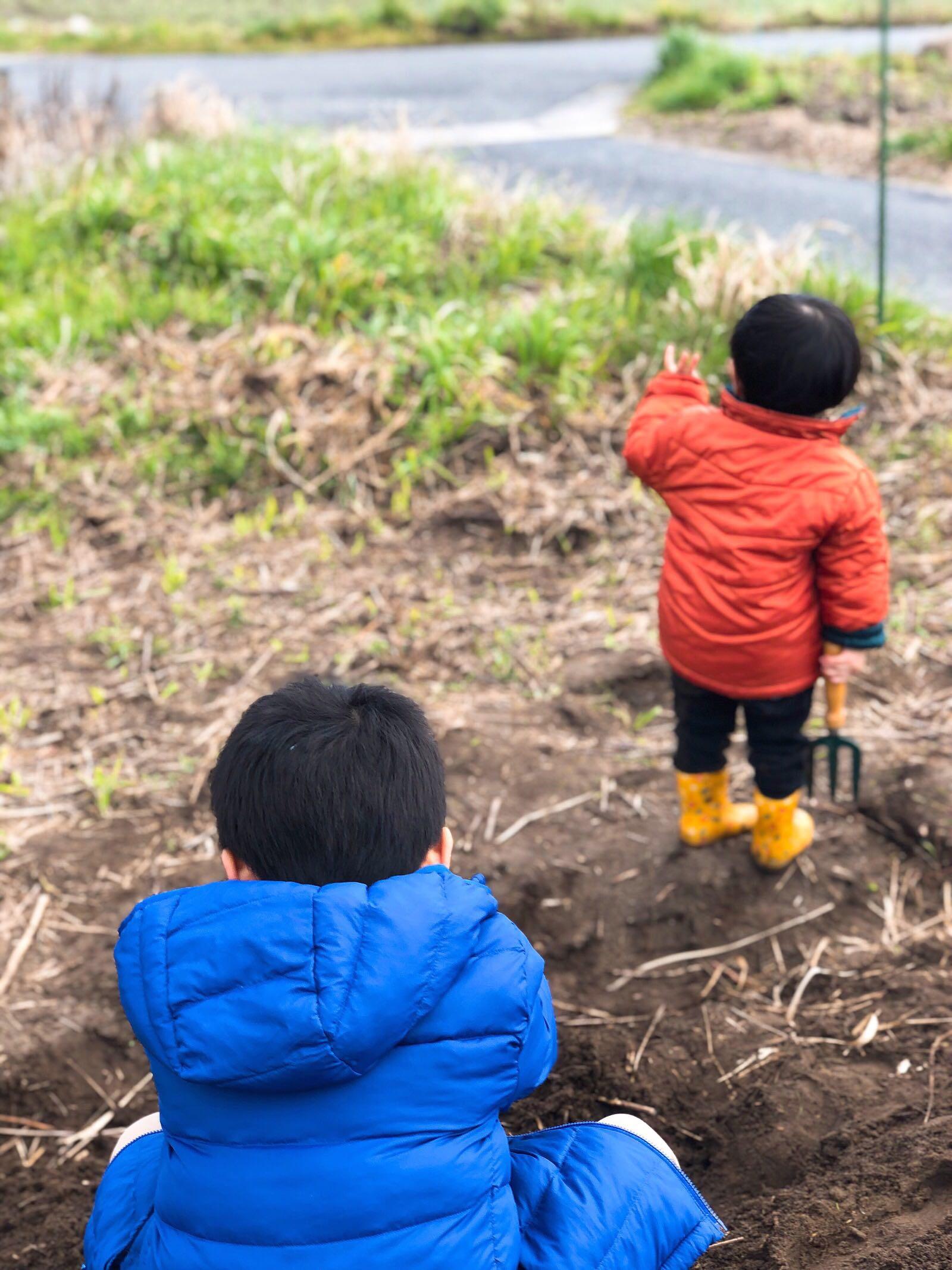 畑で遊ぶ子どもたち