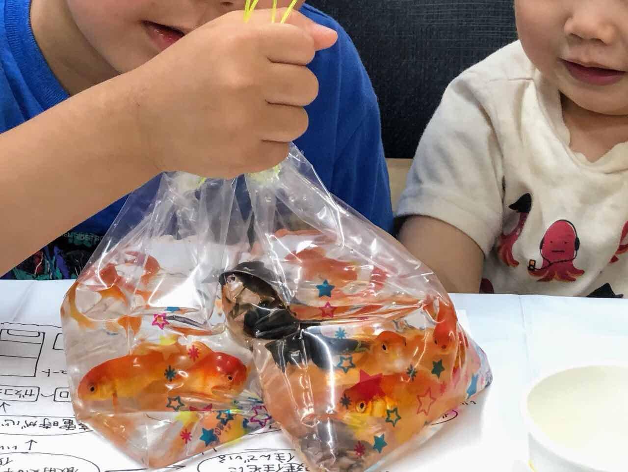 金魚すくいした子どもたち