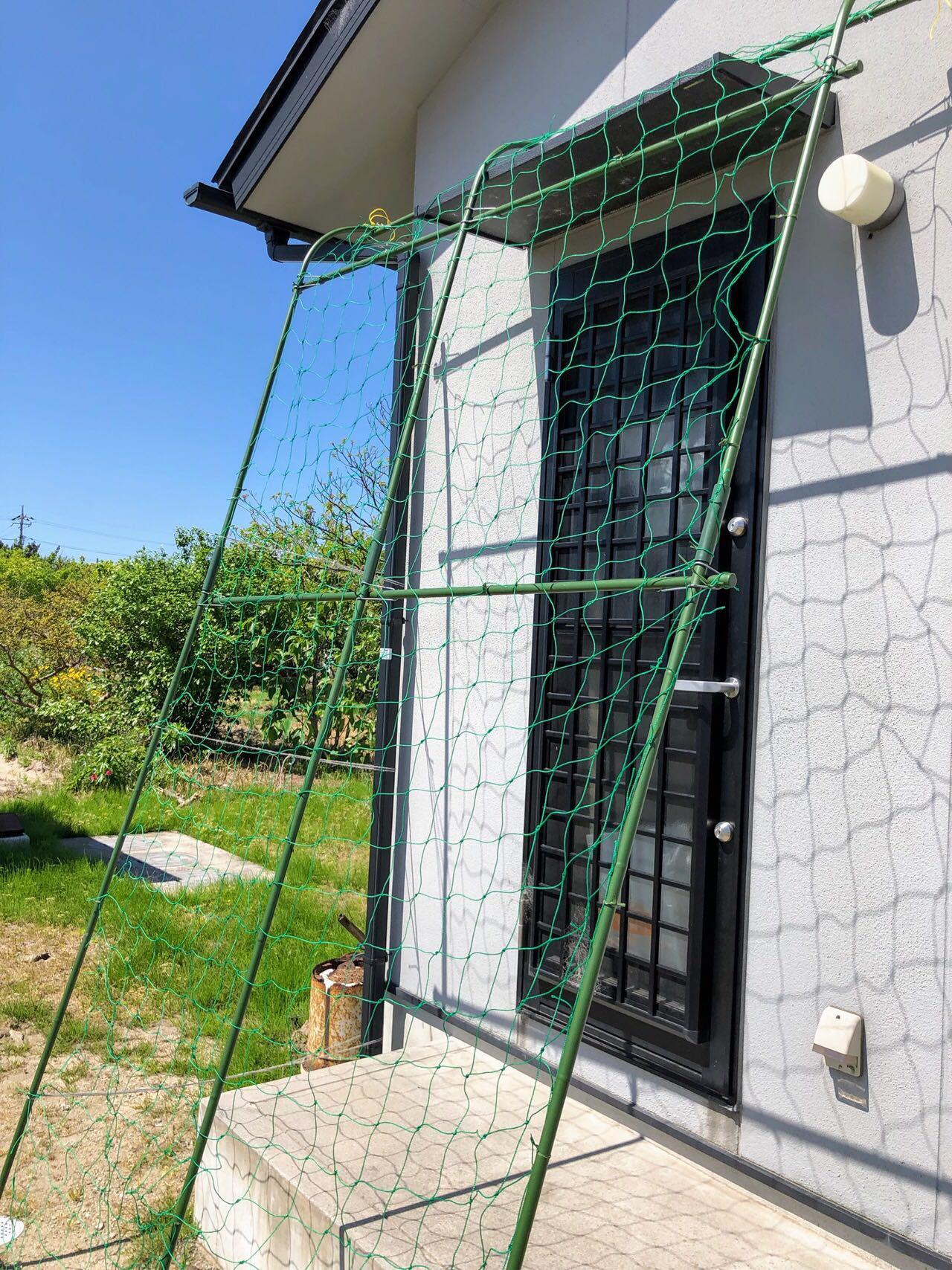 グリーンカーテンの支柱