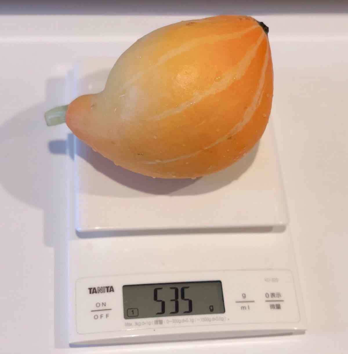 収穫したサラダカボチャ。535グラムある